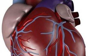 Кубанские врачи провели 5 пересадок донорских органов за один день