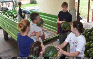 Николай Лукашенко с одноклассниками отвез в дом престарелых 6 тонн арбузов