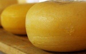 Половину сыров на российских прилавках нельзя назвать сырами