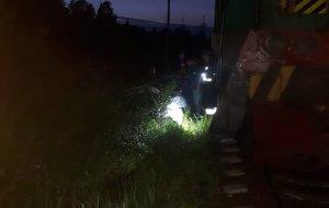 Подмосковные спасатели оказали первую помощь пострадавшим  при столкновении с локомотивом