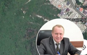 Шаталовский лес: история о том, как 4 гектара леса перешли из земель лесного фонда в земли населенных пунктов